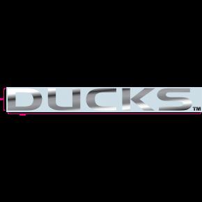 University of Oregon - Sticker - Windshield - Chrome - 'Ducks'