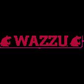 Washington State University - Sticker - Windshield - WAZZU